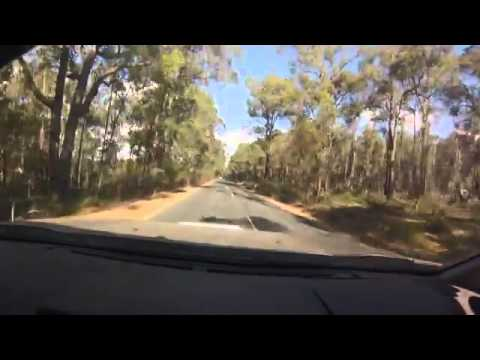 Mundaring Weir and state forest part2  Videos Slideshows from around the world   YouTube 360p]