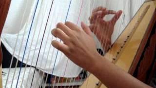 Menino da Porteira - Harpa Paraguaia