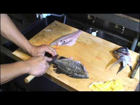 黒鯛(チヌ)の捌き方