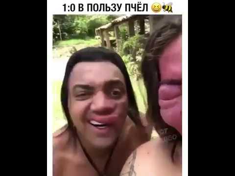 Покусали пчёлы ) прикол