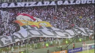 Reação da torcida nos gols | Atlético 3x1 Santos (Brasileiro 2018)