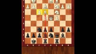 Основы шахмат 13. Основы дебюта. Стратегия системы Еж 1. Шахматы. Евгений Гринис