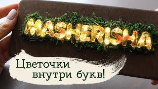 Светящиеся буквы   Masherisha