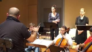 Musique des Lumières - Miroir Bach