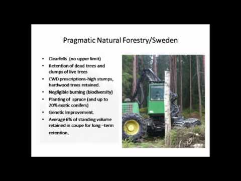 Forestry Talks - Silviculture and social acceptability in Central Europe - John Hickey
