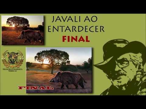 """MAKING OFF DA AQUARELA """"JAVALI AO ENTARDECER"""" - (50X35 cm) - FRANCISCO CHARNECA - WILDLIFE ART"""