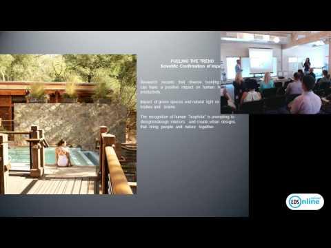 SPA в гостиничном бизнесе: дизайнерские решения и успешные маркетинговые модели
