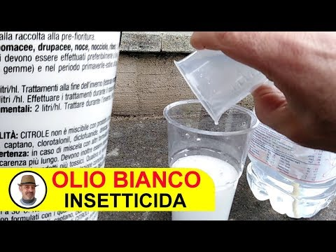 OLIO BIANCO TRATTAMENTO INSETTICIDA