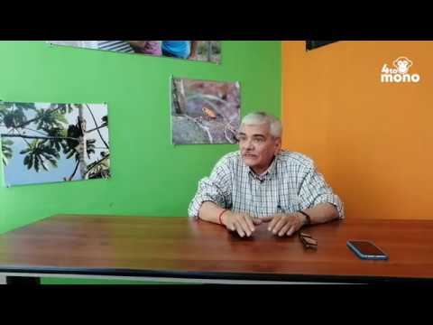 Cómo está la cobertura de bosques en Nicaragua