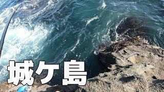 【城ケ島】尺メジナ狙い!猪子島前、安房崎に挑む【2019年9月中旬】