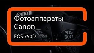 Видеообзор фотоаппарата Canon EOS 750D