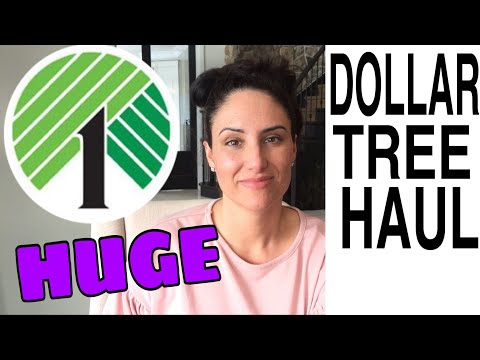 Dollar Tree Haul For My Cricut And Crafting