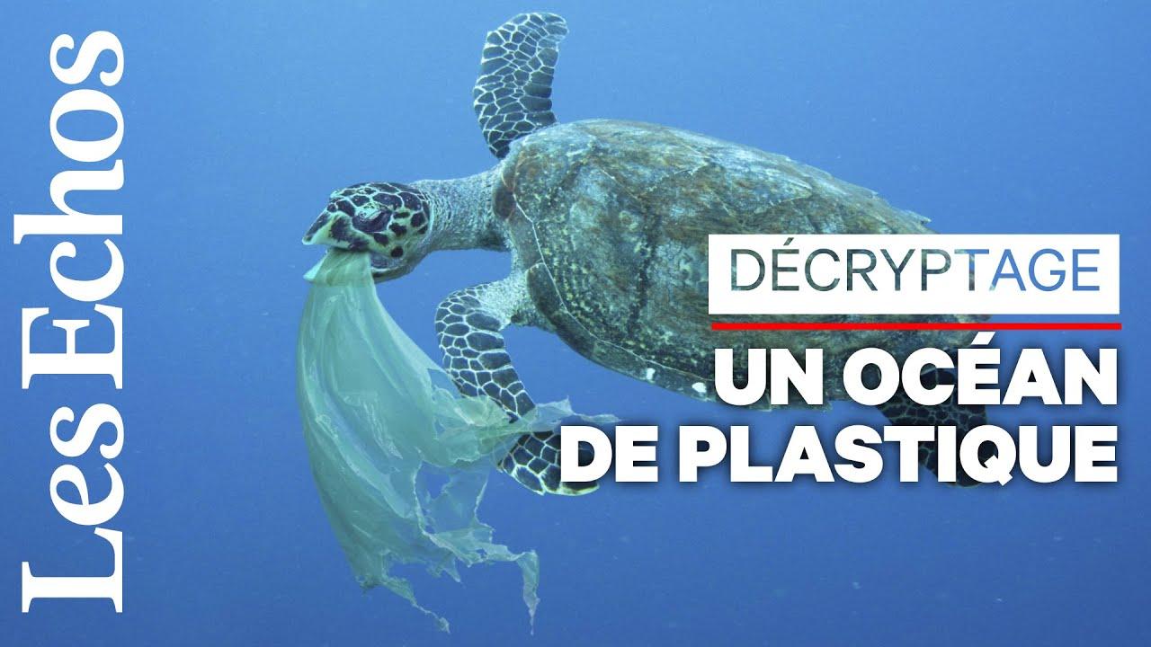 Vraiment fantastique, le plastique ? Plutôt dramatique pour les océans