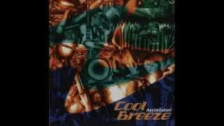 COOL BREEZE - DOWN BY LAW