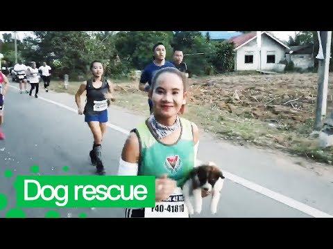 Marathon Runner Rescues Lost Puppy Midway Through Race