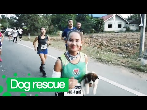 Jo Mercer - Marathon Runner Rescues Lost Puppy Midway Through Race