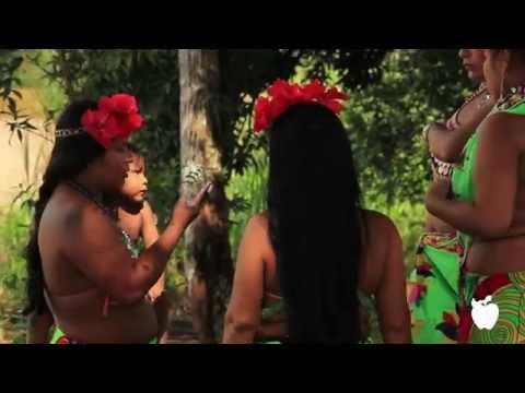 Panamanian Rainforest: Panama - Apple Vacations