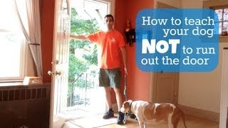 Teach Your Dog Not To Run Out The Door