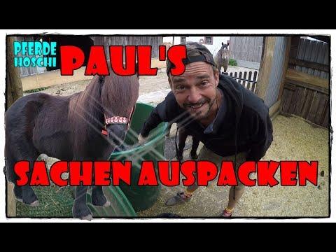 Wieviel Tiere leben auf Manapi & Hoschi Grüß-Spur | Pferde Hoschi from YouTube · Duration:  10 minutes 52 seconds
