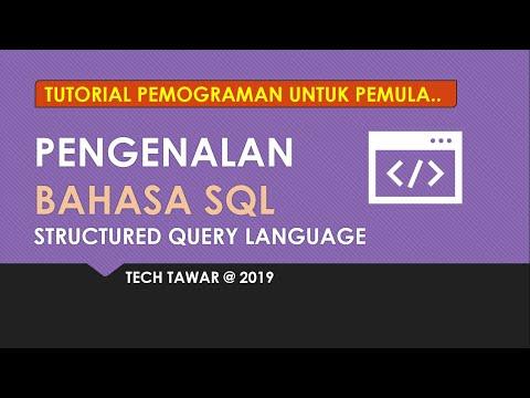 🔴CARA MEMBUAT DATABASE PADA MYSQL WORKBENCH BASIS DATA