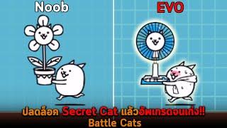 ปลดล็อค Secret Cat แล้วอัพเกรดจนเก่ง Battle Cats