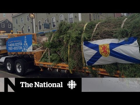 Anniversary of the Halifax Explosion
