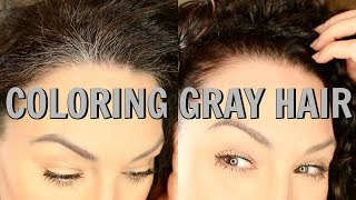 HOW TO COLOR HAIR AT HOME   MADISON REED   The Glam Belle