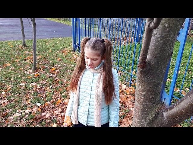 Изображение предпросмотра прочтения – СофияСултанова читает произведение «Осень.» И.С.Тургенева