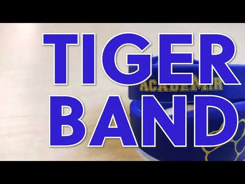 Tiger Lunch Band