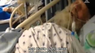 בית חולים איכילוב לא תרצו שתראו  את כתבת חדשות ערוץ 2 על הזנחה חולים  מונשמים ללא השגחה  רפואית