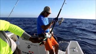 TROPICAL FISHING (Mitsio, Madagascar) octobre 2015 partie 1