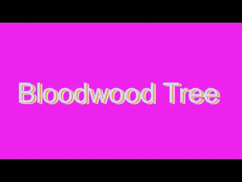 How to Pronounce Bloodwood Tree