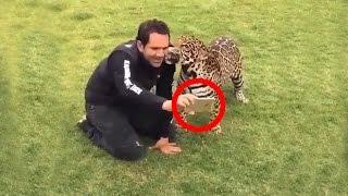 Невероятные животные #4
