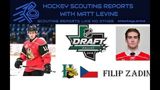 Another European Sniper? | Filip Zadina 2018 NHL Draft Scouting Report