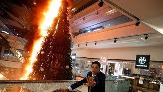 Hong Kong protesters throw molotov cocktails at police and set Christmas tree alight