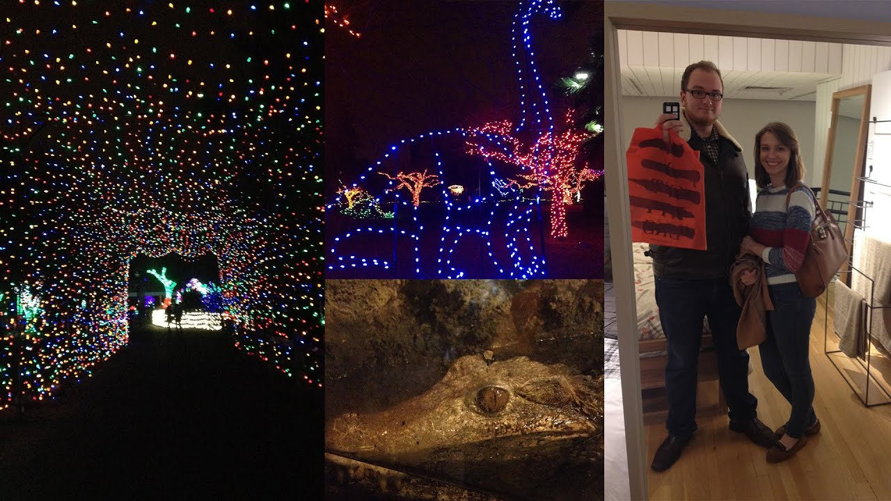 Detroit Zoo Wild Lights Show (Vlogmas Day 14) - YouTube