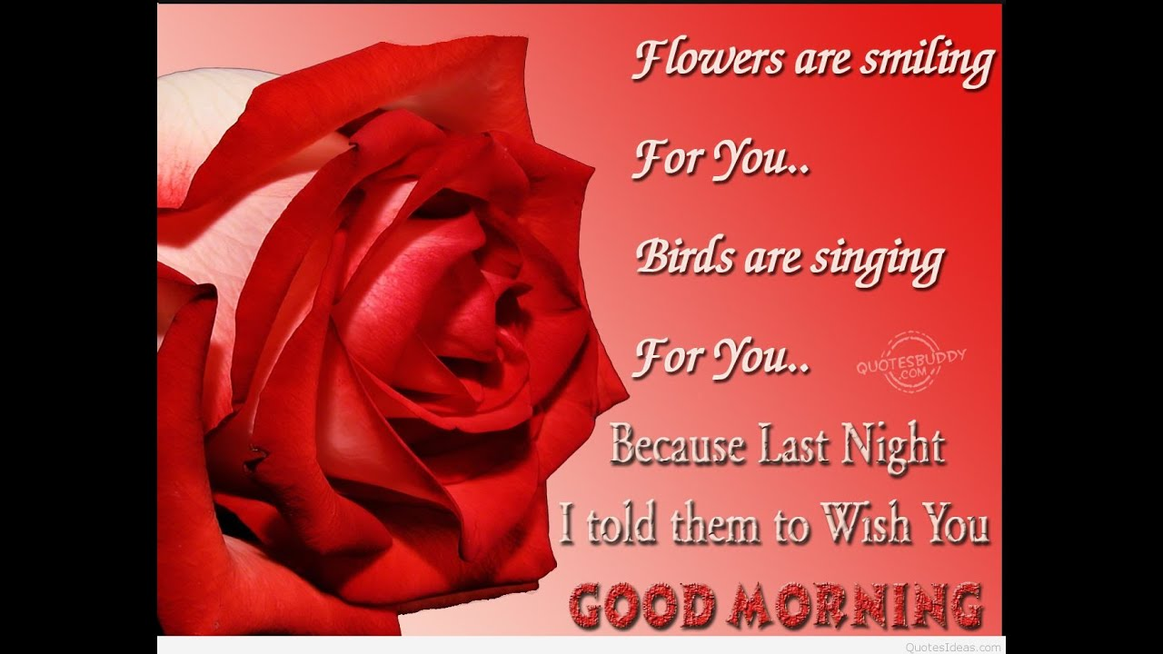 Best Good Morning Wishes Cards Sms Ecards Best Morning Wishes Whatsapp Good Morning Cards 1