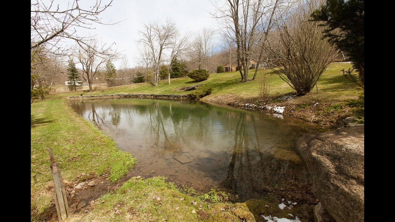 35269 The Enlightened Homestead 14 Acres With Spring Fed Pond You