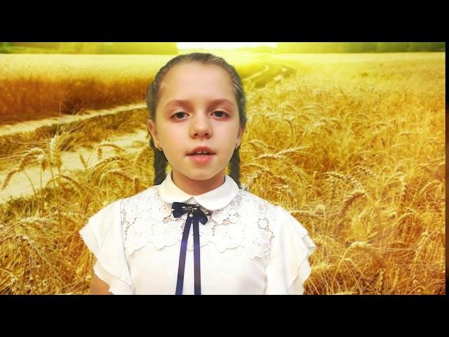 Изображение предпросмотра прочтения – АнастасияРыбакова читает отрывок изпроизведения «Я иду долиной. На затылке кепи...» С.А.Есенина