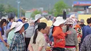 Документальный фильм. Деревня Вьетнама. Один день