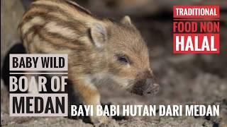 ( TRAVEL ) BAYI BABI HUTAN BABY WILD BOAR OF MEDAN NORTH SUMATRA UTARA TRADITIONAL FOOD TRADISIONAL