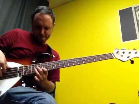 Sean Palm-Electric Bass Player/Instructor