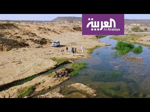 على خطى العرب: أسماك على طريق الهجرة - الحلقة 11  - نشر قبل 50 دقيقة