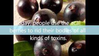 What Are Some Of The Acai Weight Loss Benefits