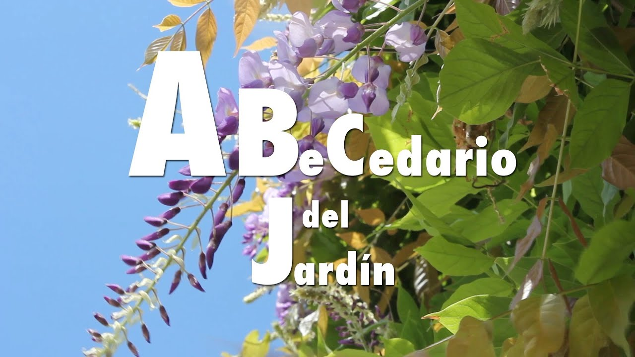Abecedario del jard n espa ol youtube for Don caracol ciudad jardin