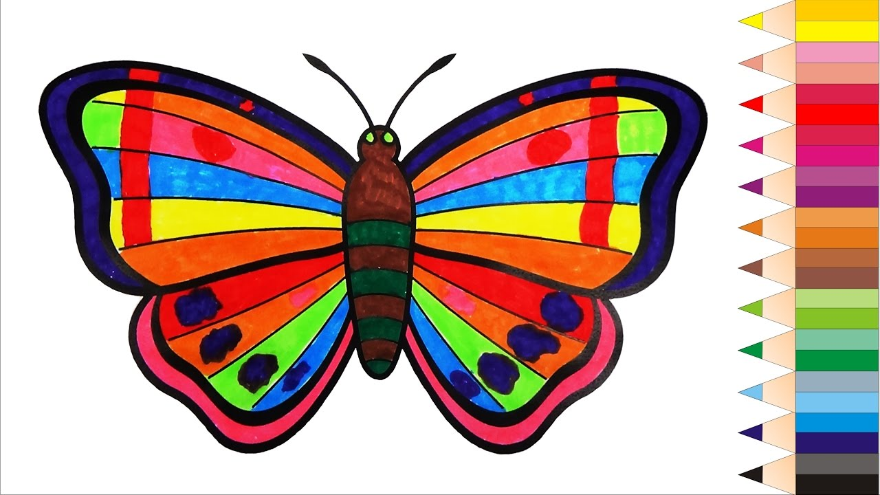 Coloring Butterflies Book Videos For Children Learn Colors Kids