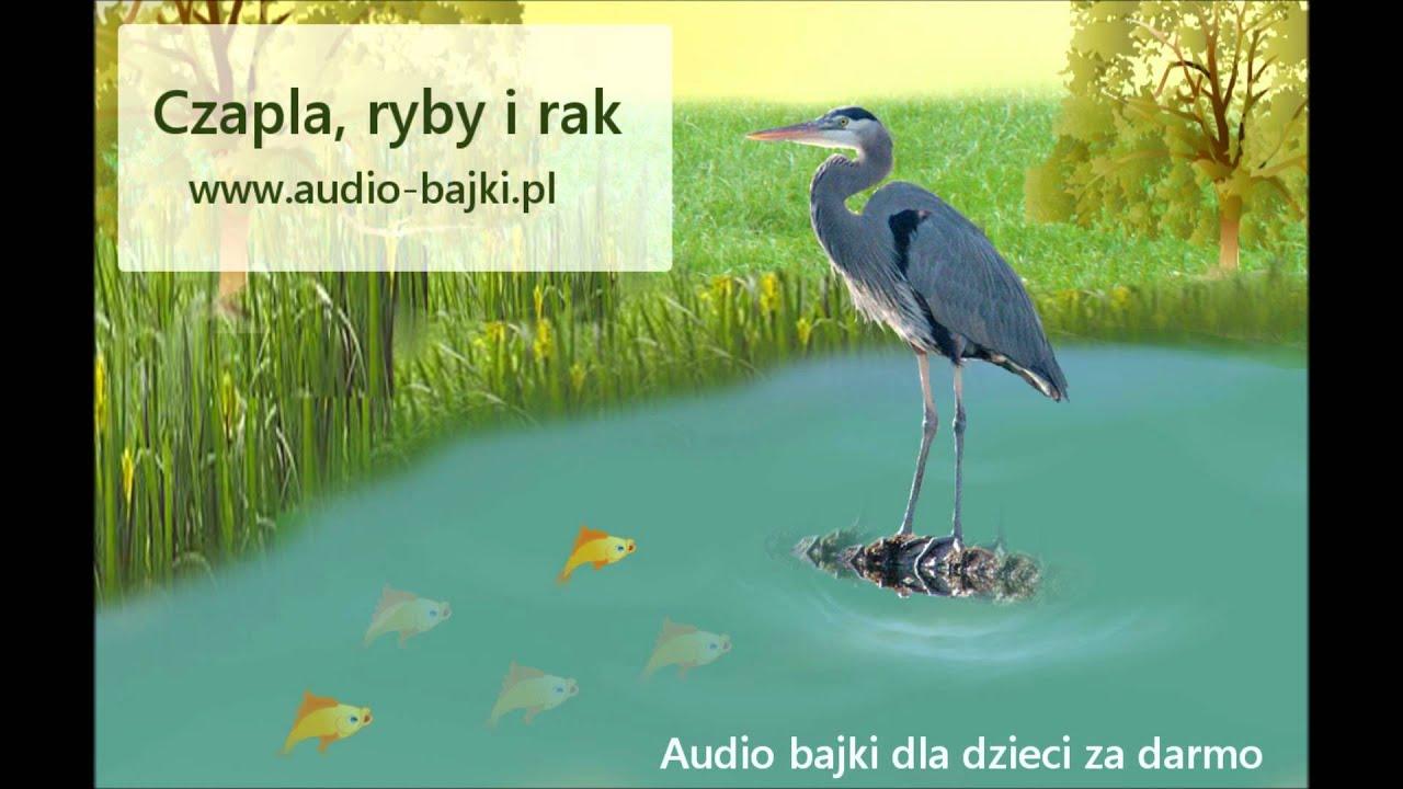 Czapla Ryby I Rak Ignacy Krasicki Audio Bajka