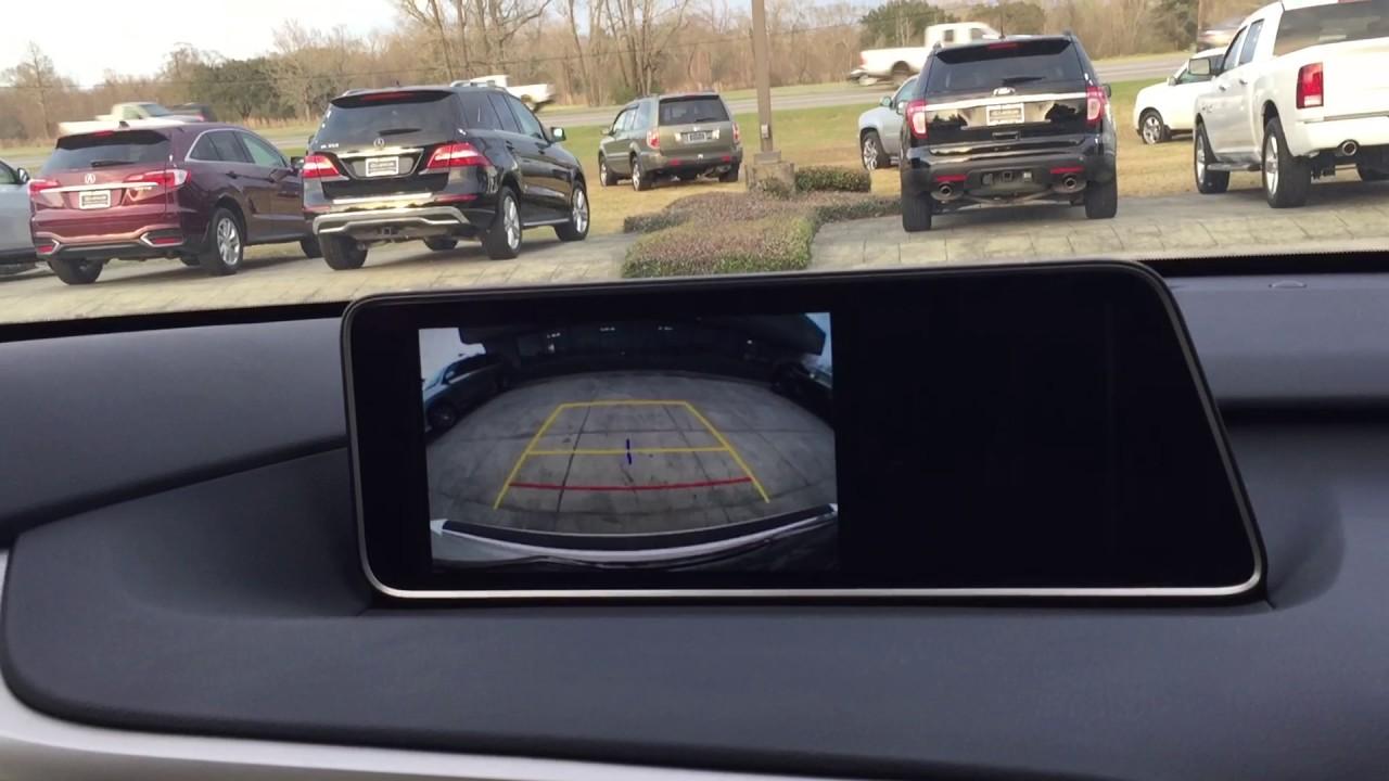 2017 Lexus RX - Park Assist & Blind Spot Monitor