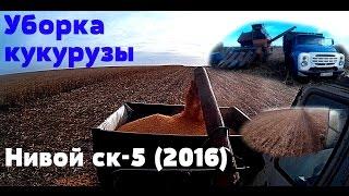 Уборка кукурузы Нивой ск-5 (2016)