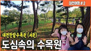 [#대전여행#] 가을여행지, 대전 가을여행코스. 도심속…